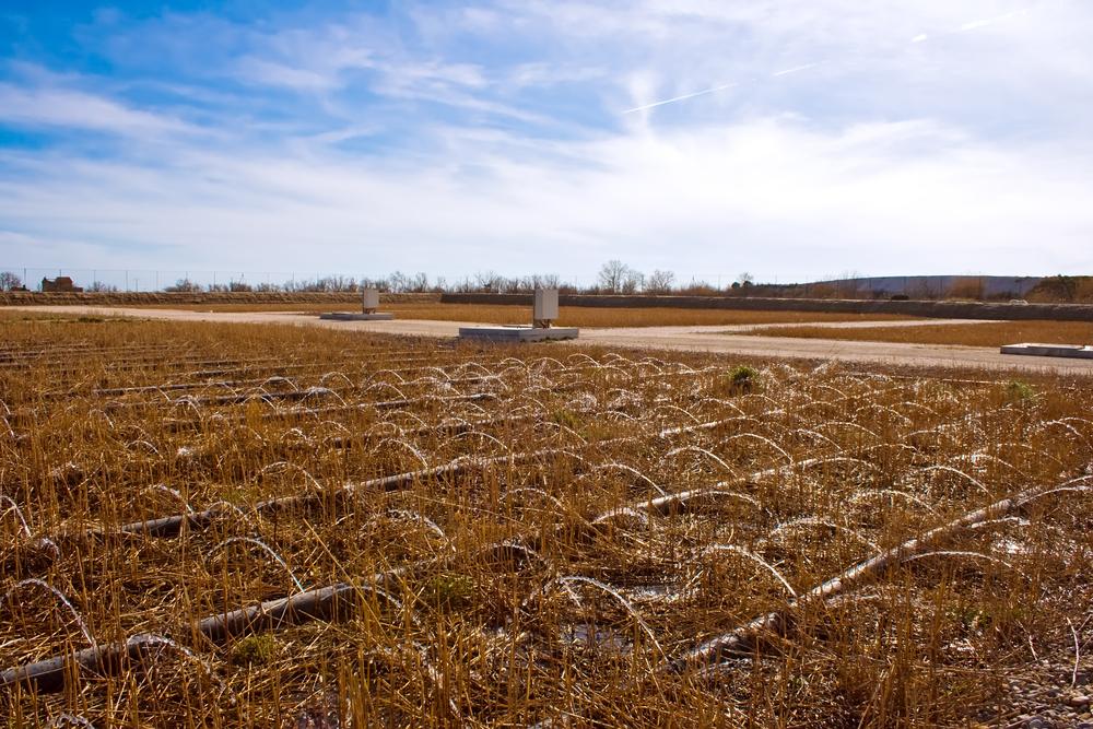 agriculture contamination